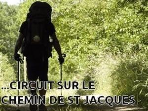 Vous organisez votre circuit sur le chemin de St Jacques de Compostelle