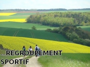 Vous organisez votre regroupement sportif
